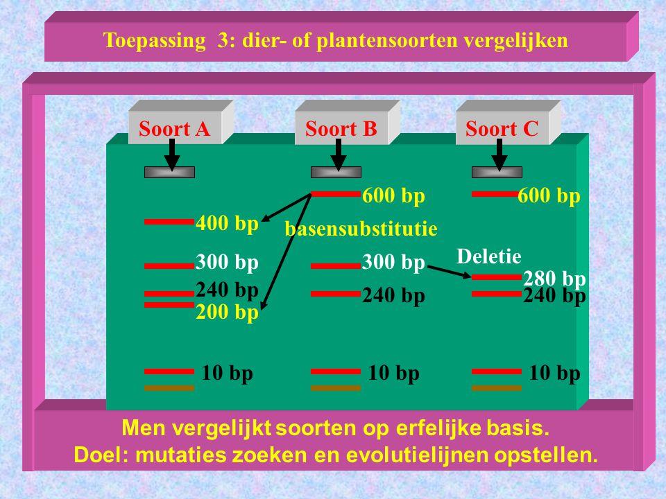 Toepassing 3: dier- of plantensoorten vergelijken