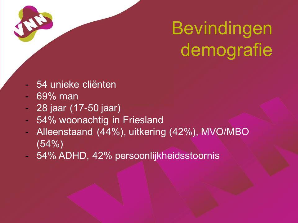 Bevindingen demografie