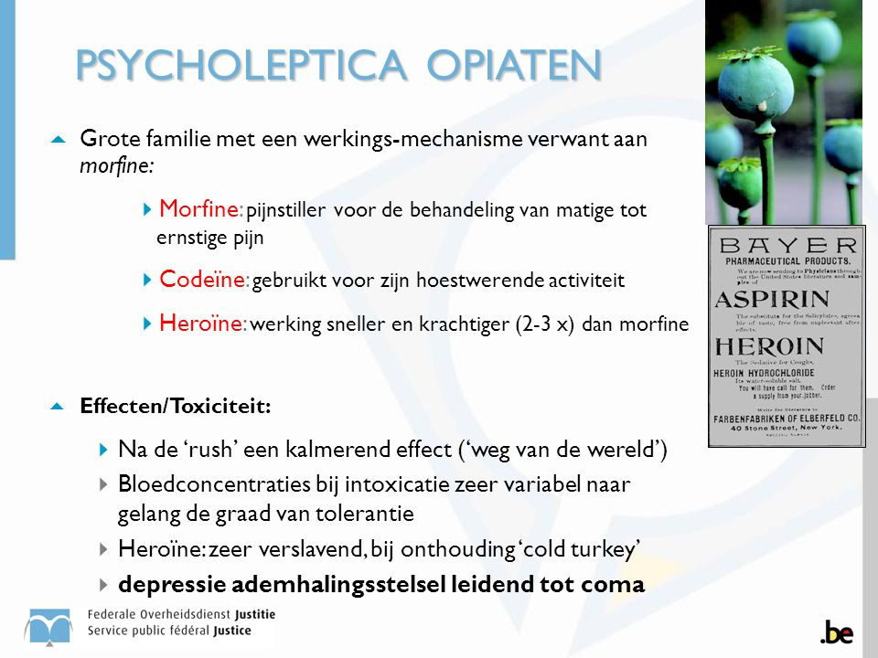 PSYCHOLEPTICA OPIATEN