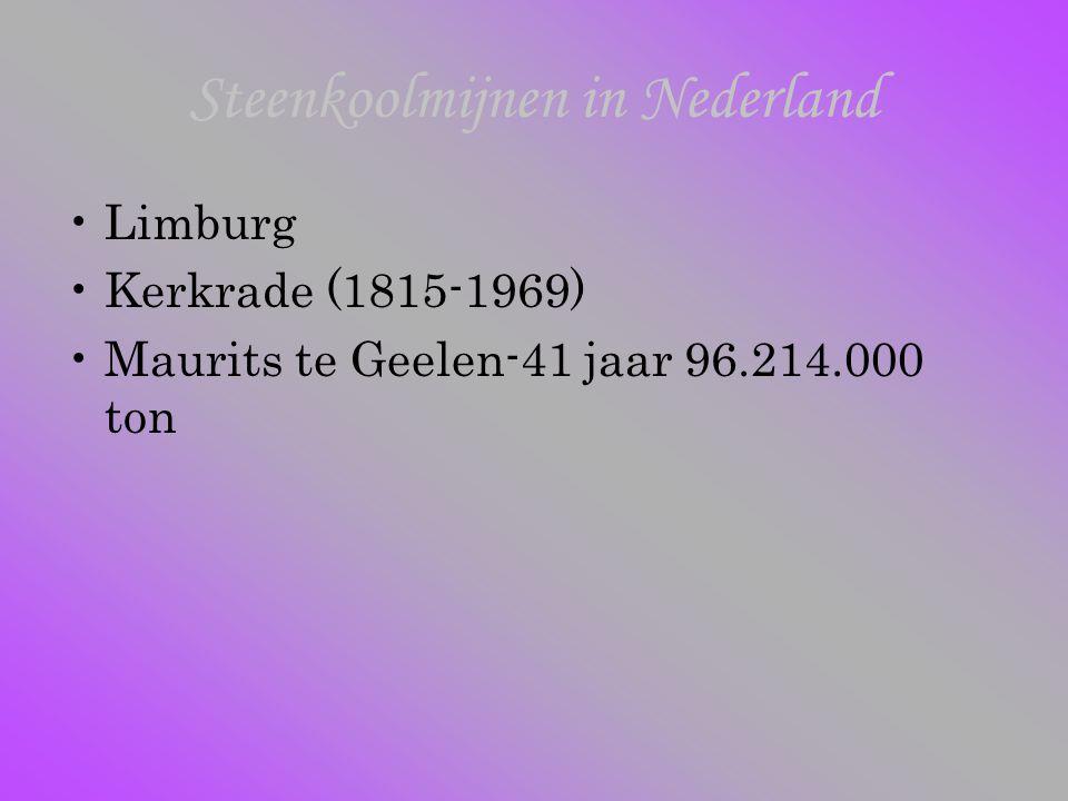 Steenkoolmijnen in Nederland