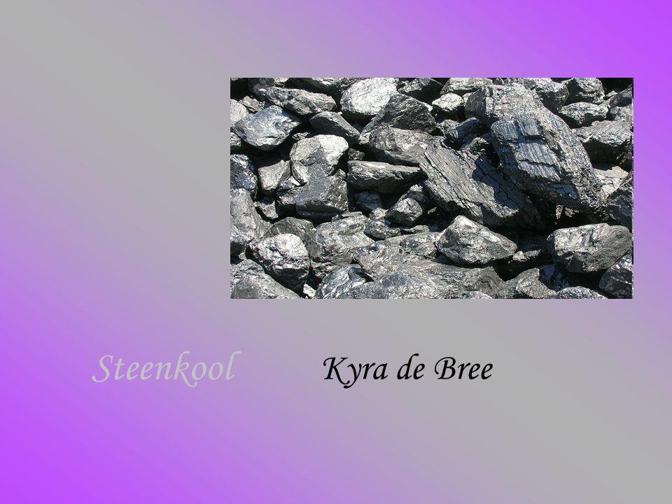 Steenkool Kyra de Bree
