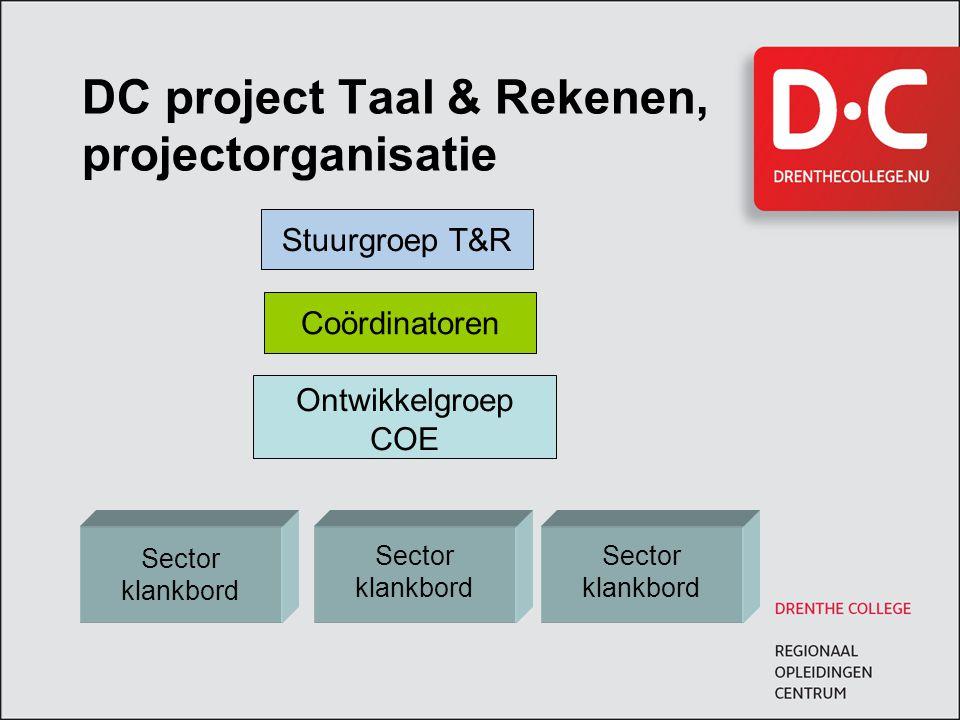 DC project Taal & Rekenen, projectorganisatie