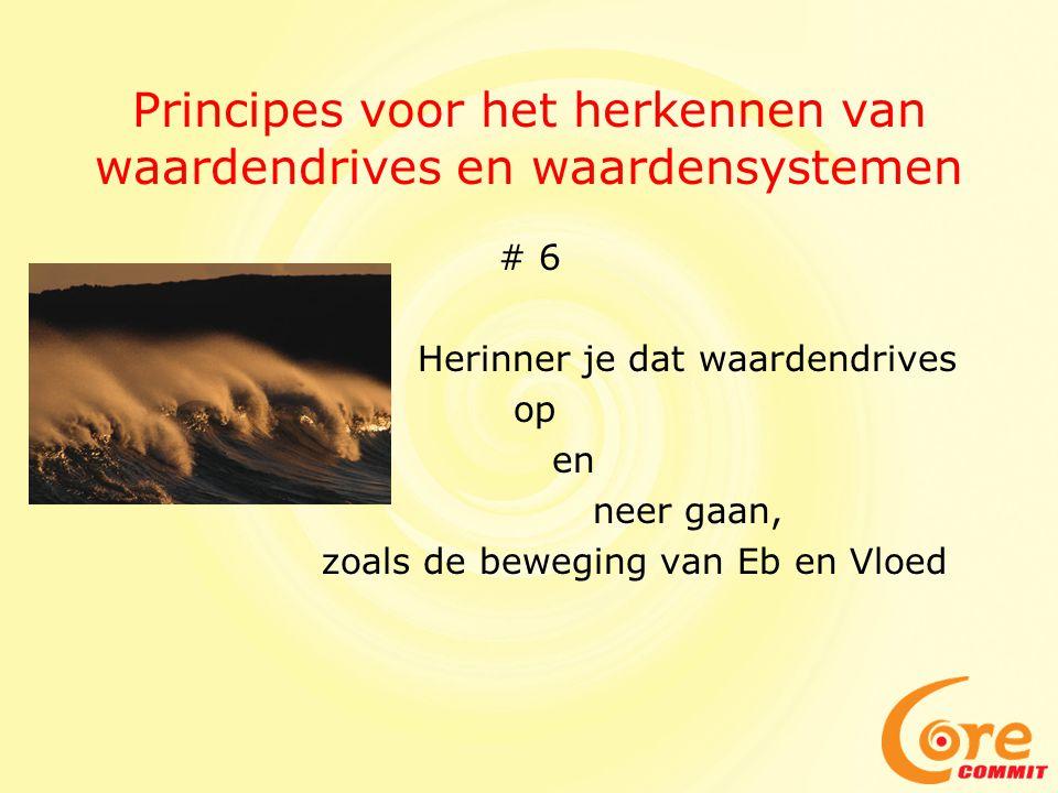 Principes voor het herkennen van waardendrives en waardensystemen
