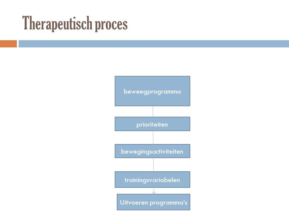 Therapeutisch proces beweegprogramma prioriteiten