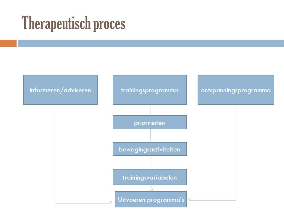 Therapeutisch proces Informeren/adviseren trainingsprogramma