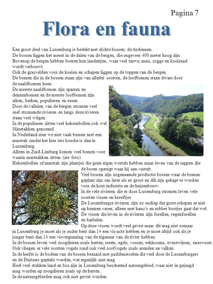 Pagina 7 Flora en fauna. Een groot deel van Luxemburg is bedekt met dichte bossen, de Ardennen.
