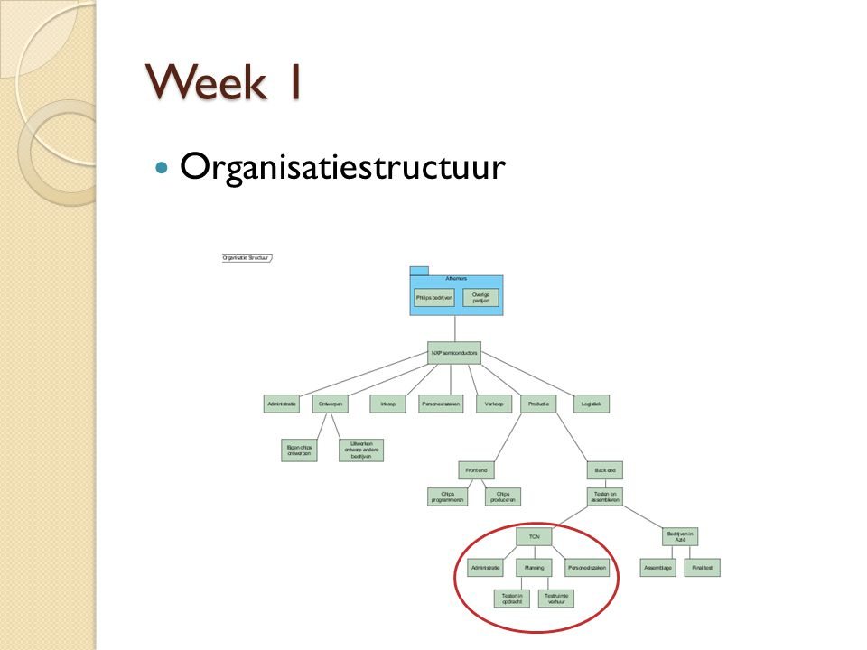 Week 1 Organisatiestructuur