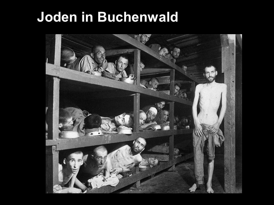 Joden in Buchenwald