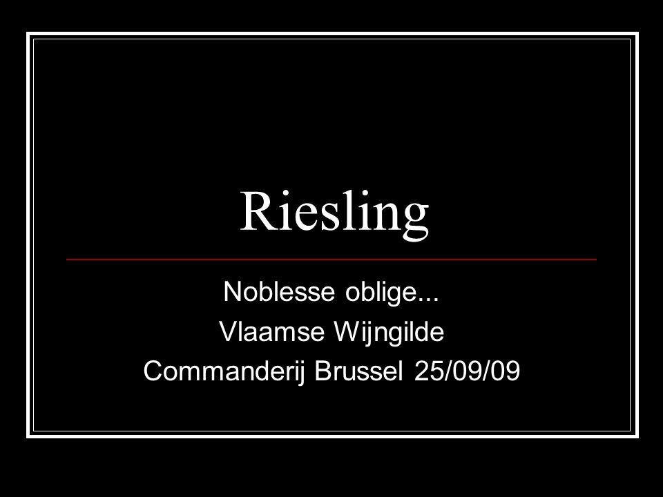 Noblesse oblige... Vlaamse Wijngilde Commanderij Brussel 25/09/09