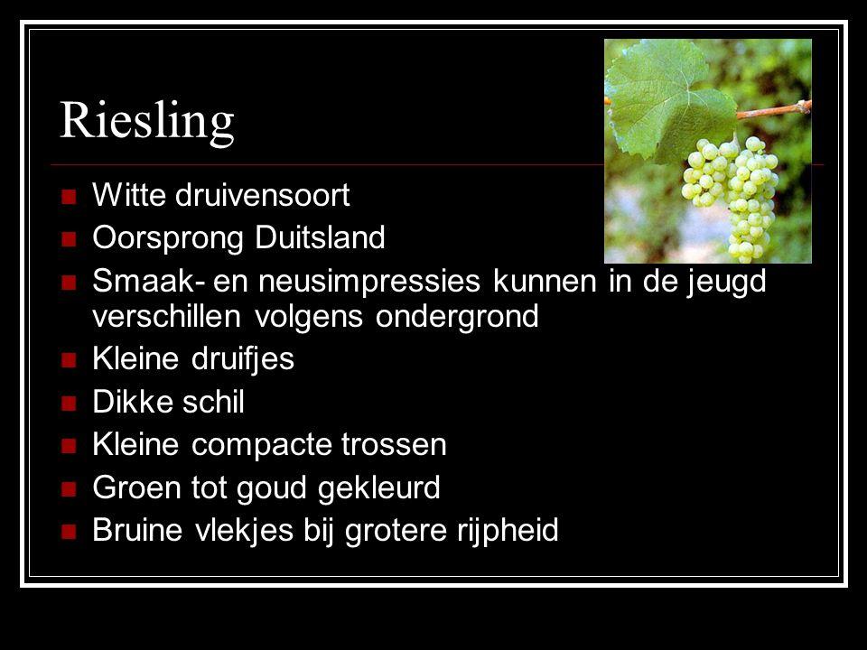 Riesling Witte druivensoort Oorsprong Duitsland