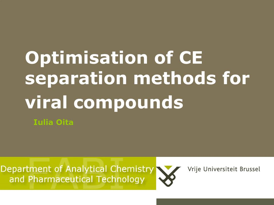 Optimisation of CE separation methods for viral compounds