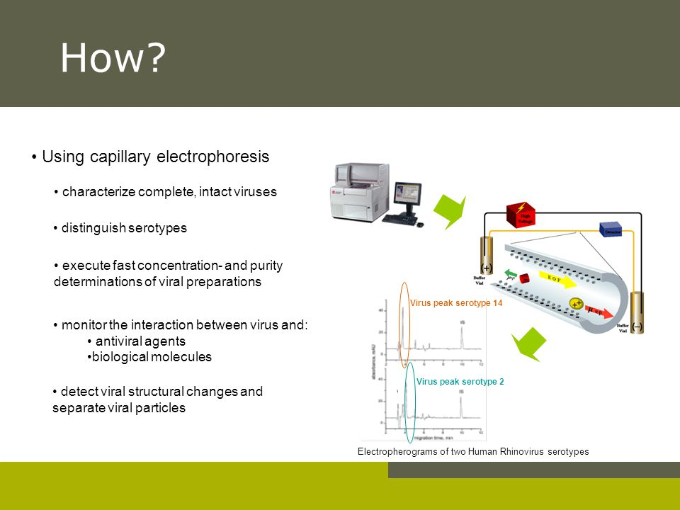 How Using capillary electrophoresis