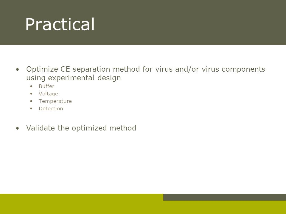 Practical Optimize CE separation method for virus and/or virus components using experimental design.
