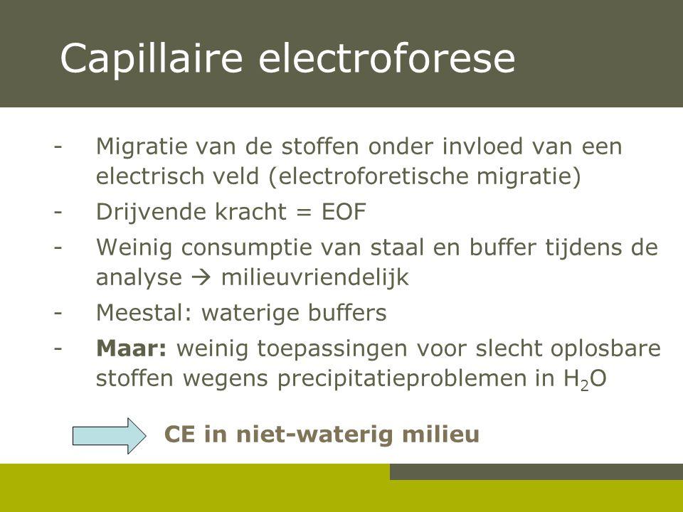 Capillaire electroforese