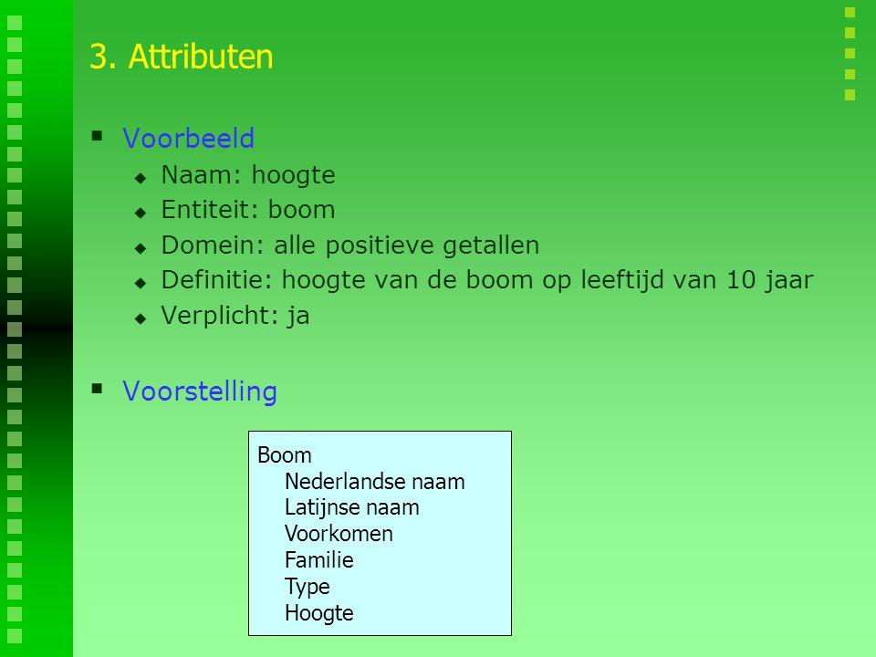 3. Attributen Voorbeeld Voorstelling Naam: hoogte Entiteit: boom