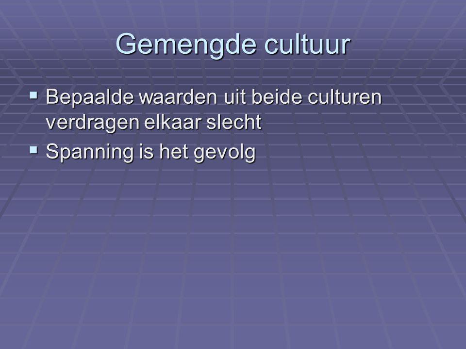 Gemengde cultuur Bepaalde waarden uit beide culturen verdragen elkaar slecht Spanning is het gevolg