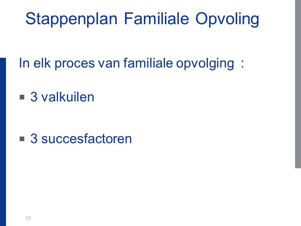 Stappenplan Familiale Opvoling