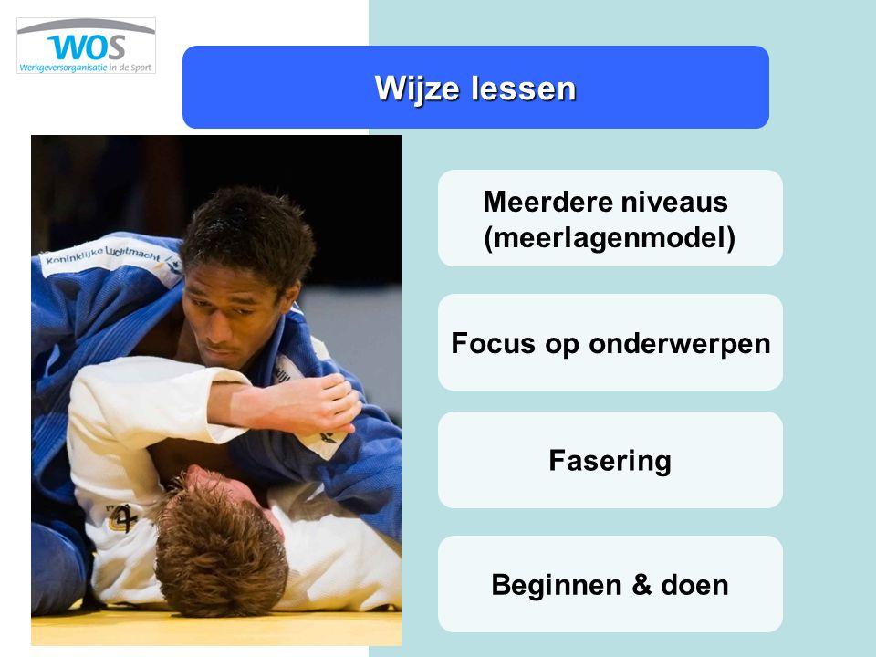 Wijze lessen Meerdere niveaus (meerlagenmodel) Focus op onderwerpen