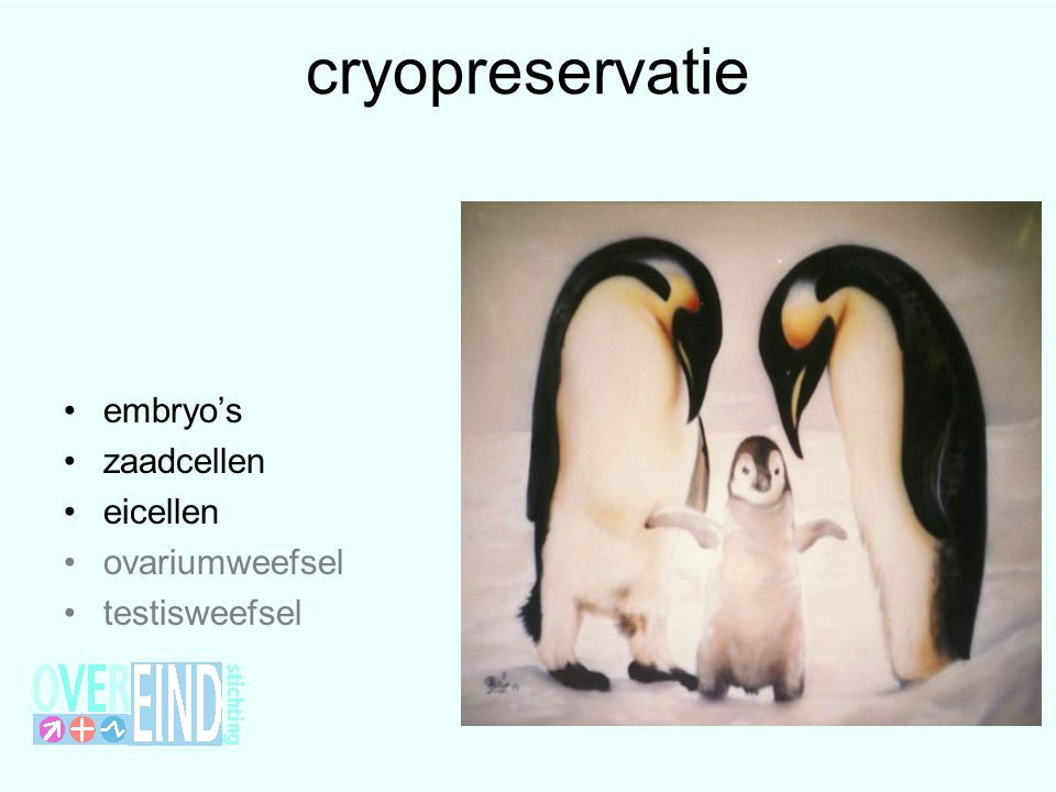 cryopreservatie embryo's zaadcellen eicellen ovariumweefsel