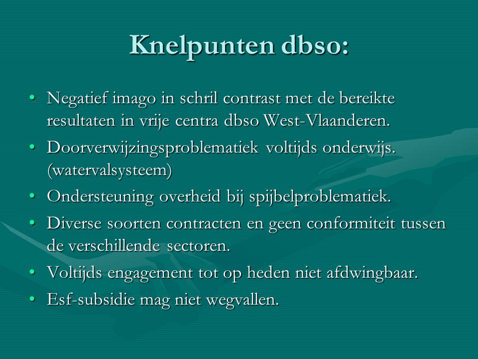 Knelpunten dbso: Negatief imago in schril contrast met de bereikte resultaten in vrije centra dbso West-Vlaanderen.