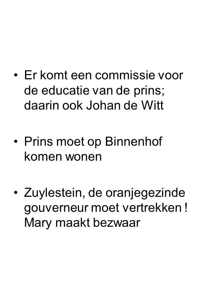 Er komt een commissie voor de educatie van de prins; daarin ook Johan de Witt