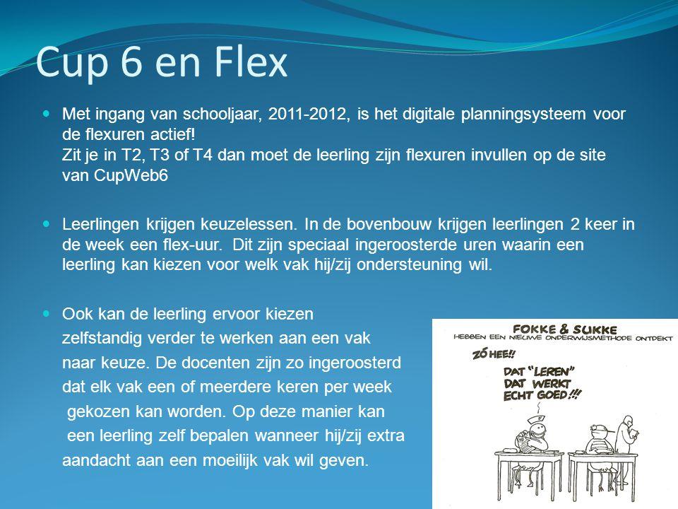 Cup 6 en Flex