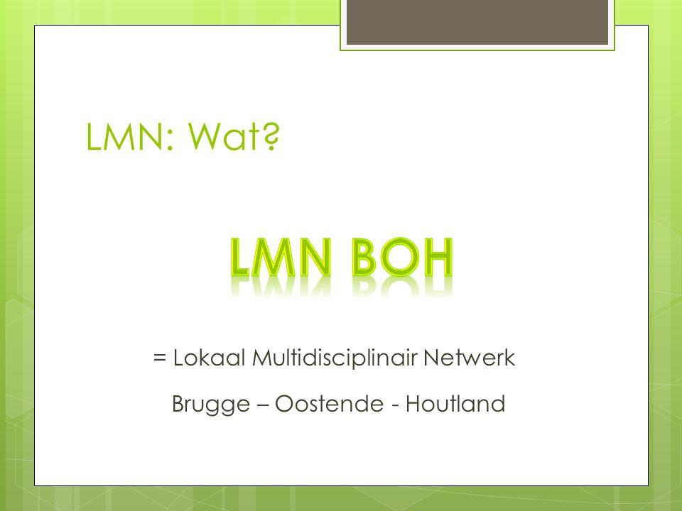 LMN BOH LMN: Wat = Lokaal Multidisciplinair Netwerk