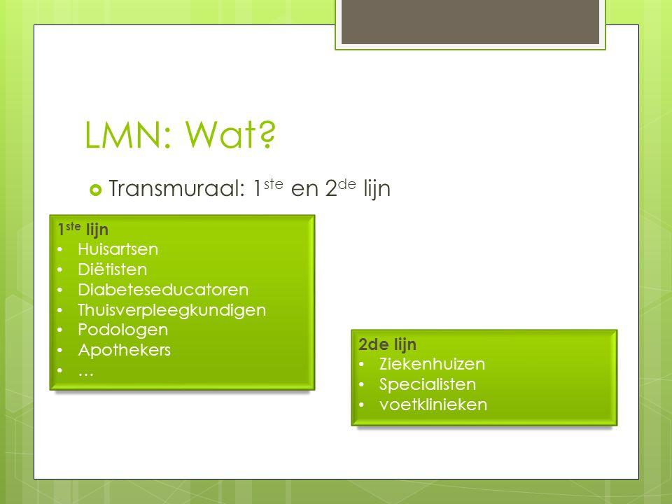 LMN: Wat Transmuraal: 1ste en 2de lijn 1ste lijn Huisartsen Diëtisten