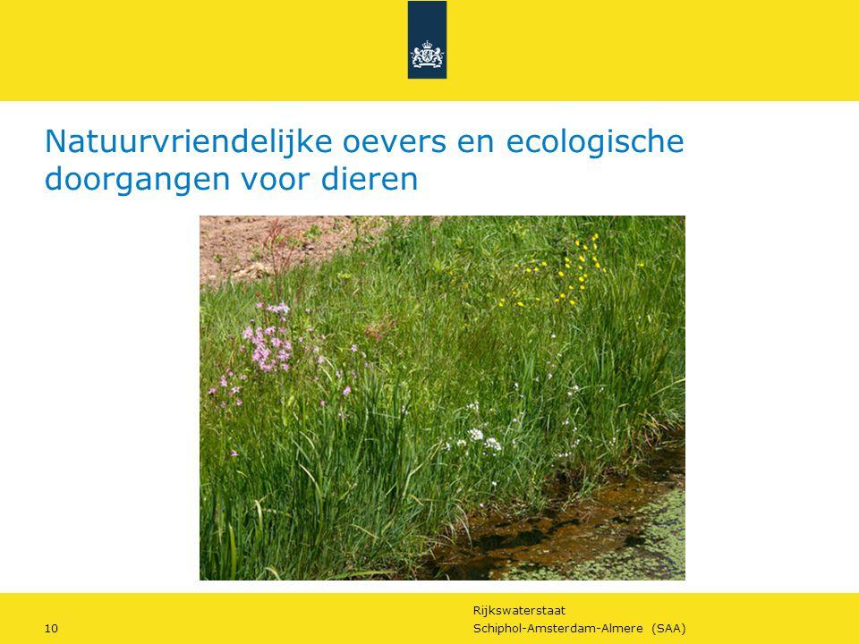 Natuurvriendelijke oevers en ecologische doorgangen voor dieren