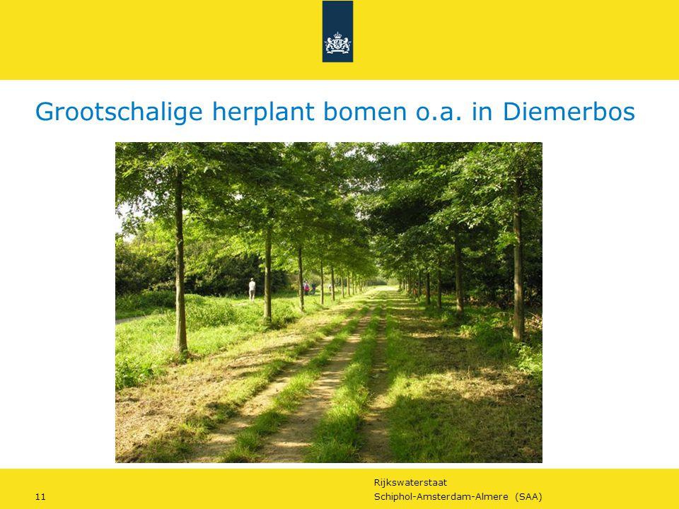 Grootschalige herplant bomen o.a. in Diemerbos