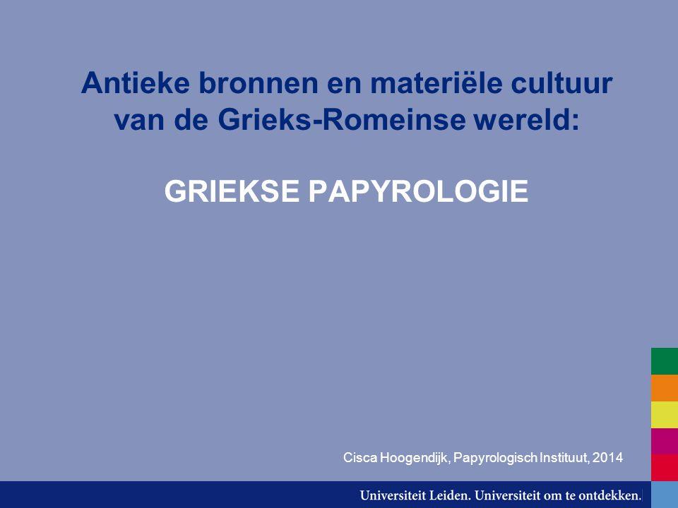 Cisca Hoogendijk, Papyrologisch Instituut, 2014
