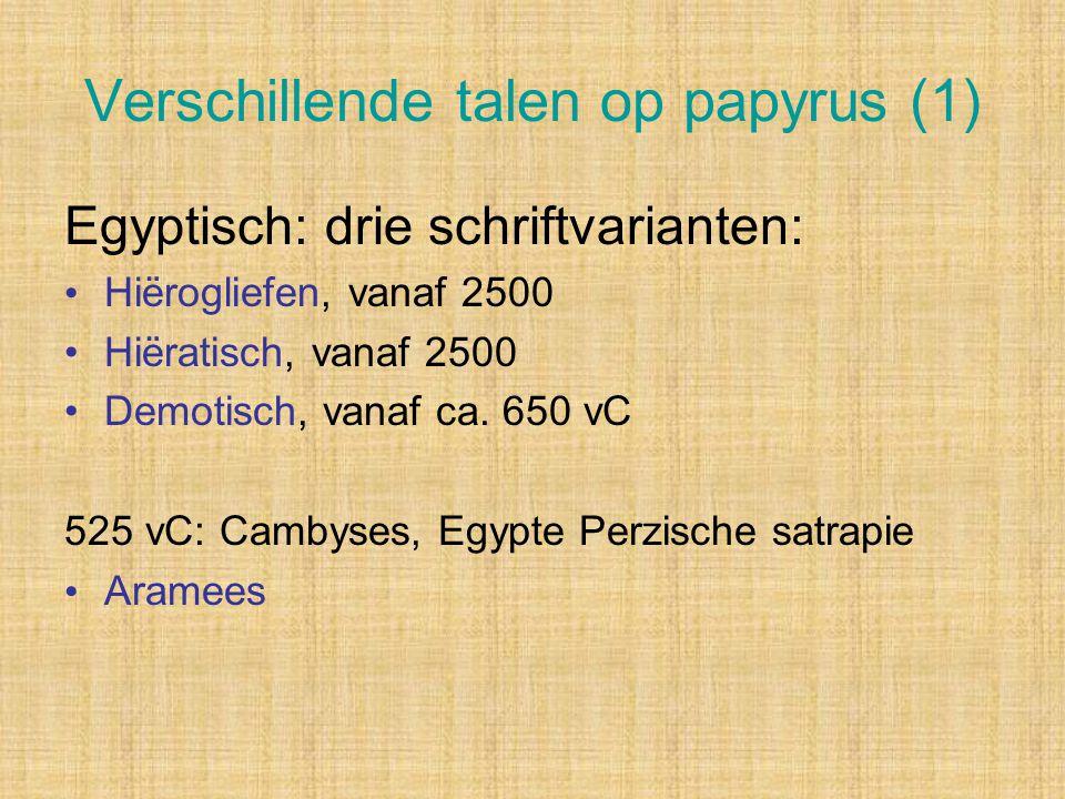 Verschillende talen op papyrus (1)