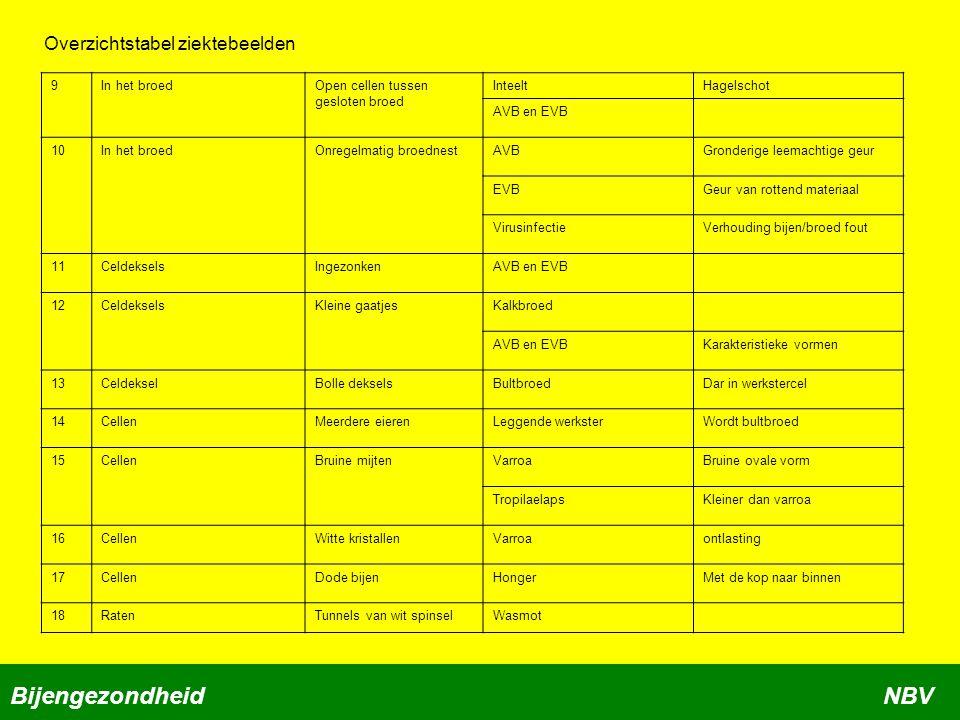 Bijengezondheid NBV Overzichtstabel ziektebeelden 9 In het broed