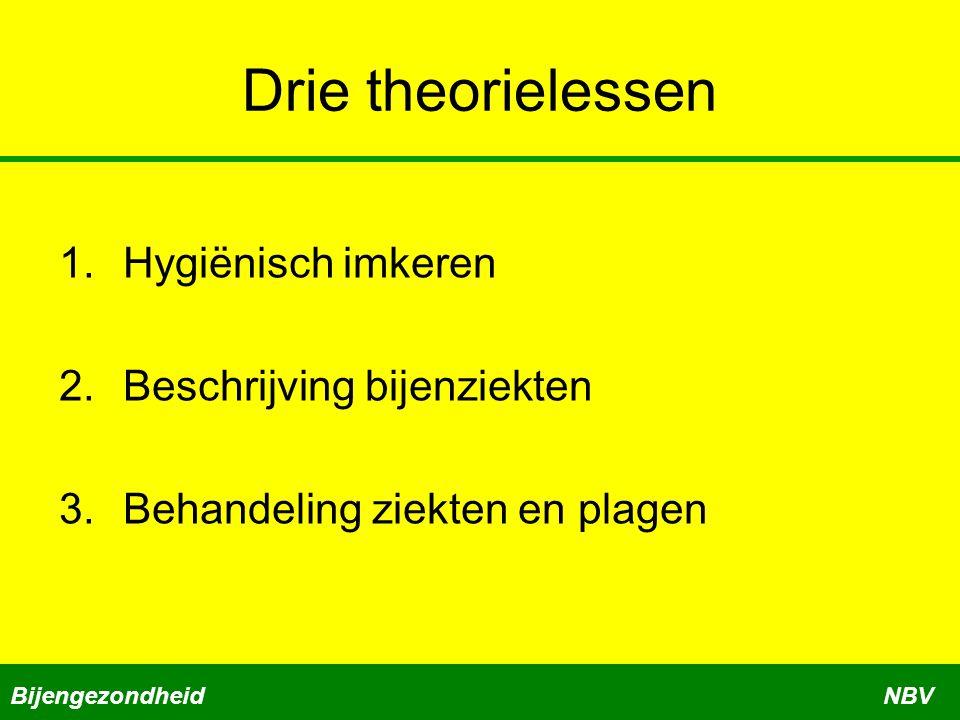 Drie theorielessen Hygiënisch imkeren Beschrijving bijenziekten