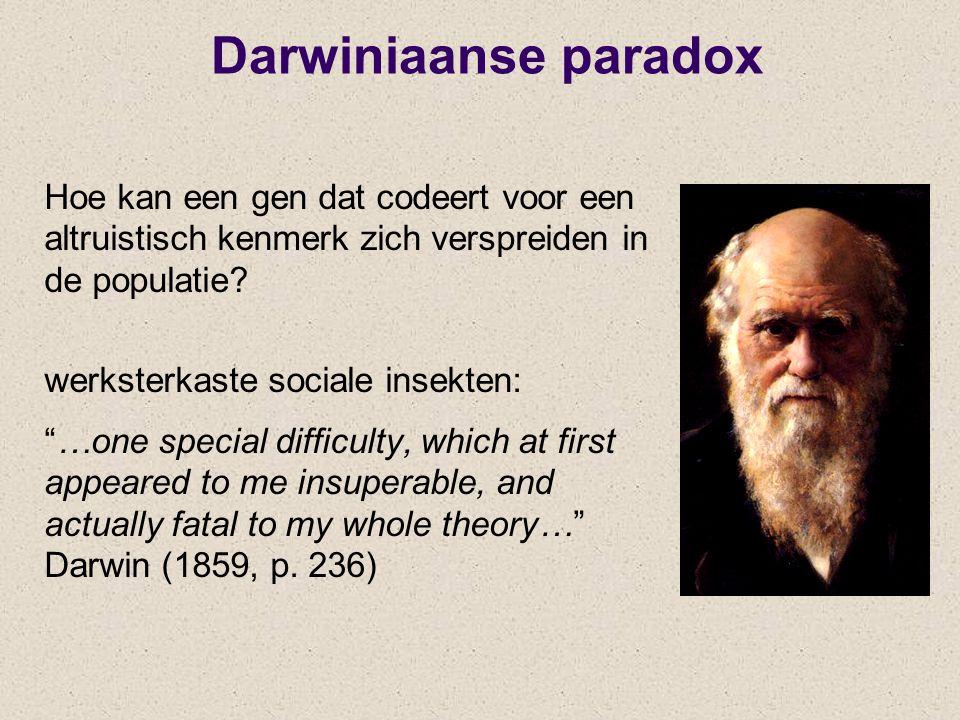 Darwiniaanse paradox Hoe kan een gen dat codeert voor een altruistisch kenmerk zich verspreiden in de populatie