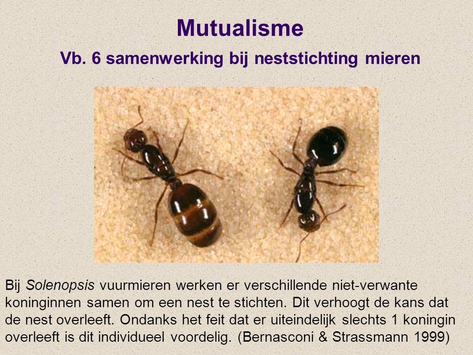 Mutualisme Vb. 6 samenwerking bij neststichting mieren