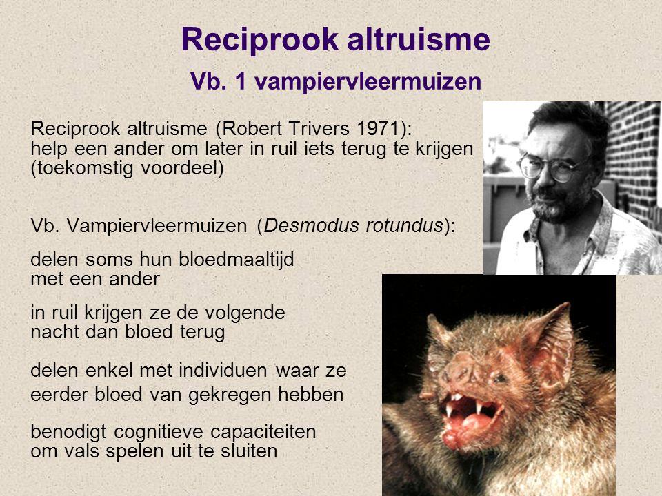 Reciprook altruisme Vb. 1 vampiervleermuizen