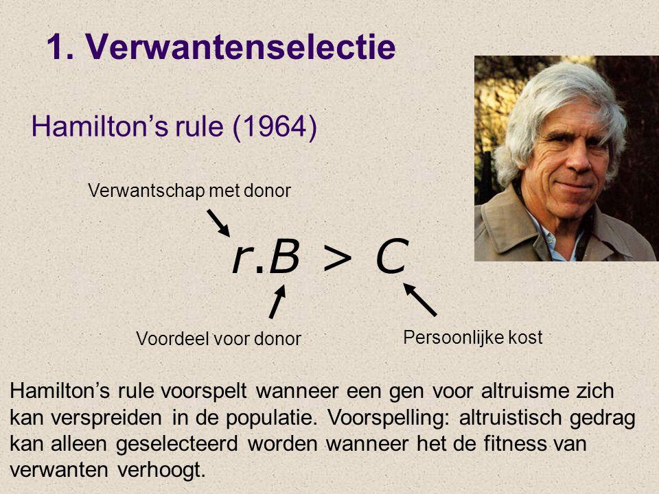 r.B > C 1. Verwantenselectie Hamilton's rule (1964)