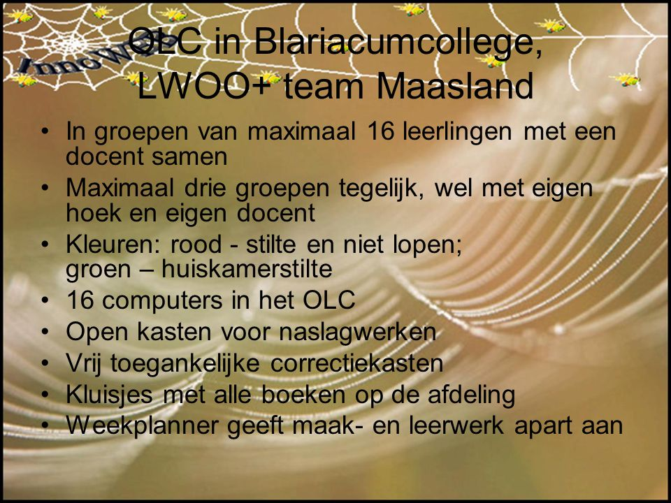 OLC in Blariacumcollege, LWOO+ team Maasland