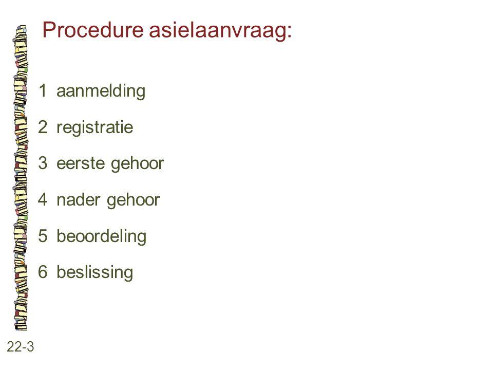 Procedure asielaanvraag: