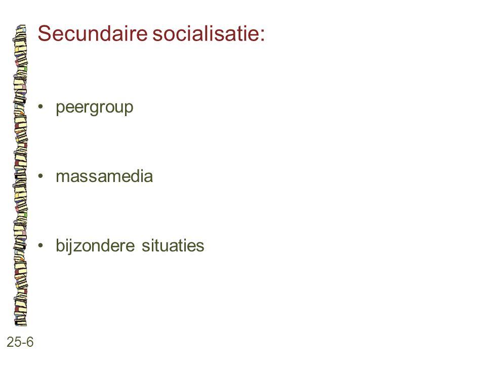 Secundaire socialisatie: