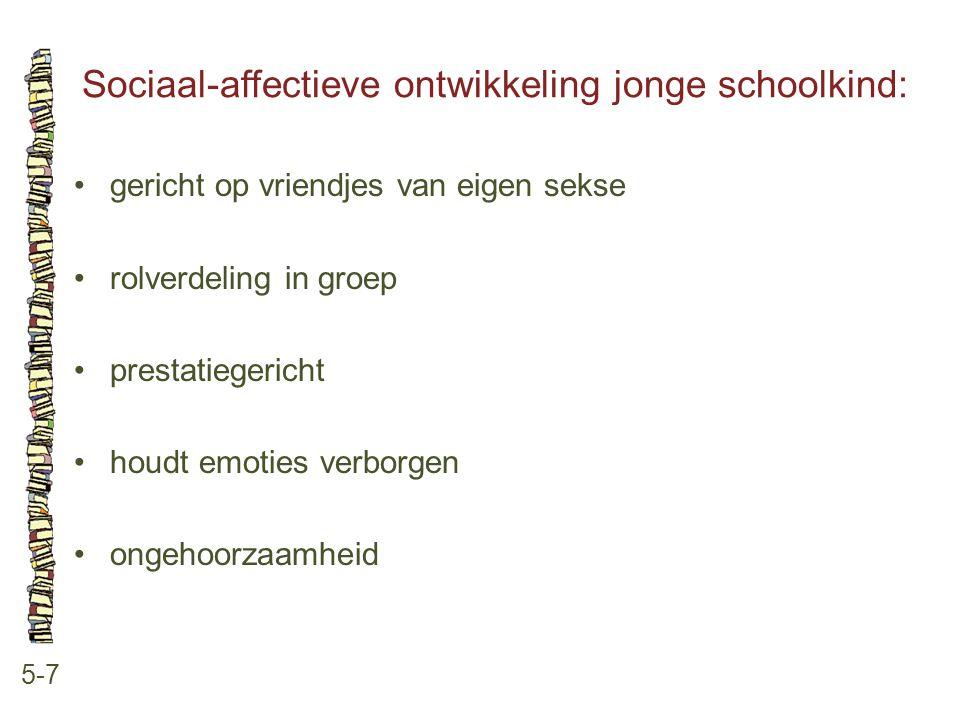 Sociaal-affectieve ontwikkeling jonge schoolkind: