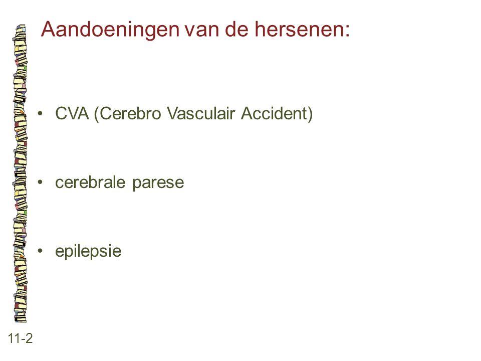 Aandoeningen van de hersenen: