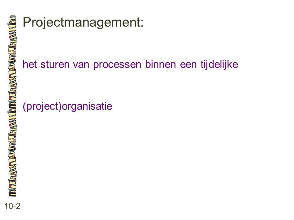 Projectmanagement: het sturen van processen binnen een tijdelijke