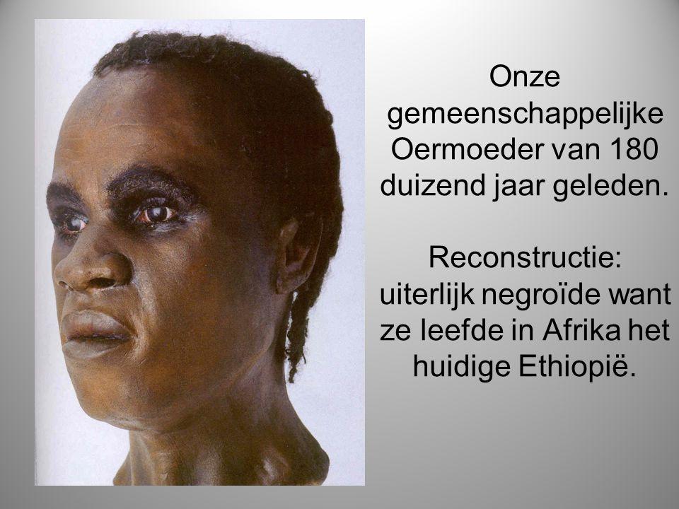Onze gemeenschappelijke Oermoeder van 180 duizend jaar geleden