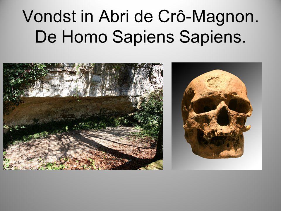 Vondst in Abri de Crô-Magnon. De Homo Sapiens Sapiens.