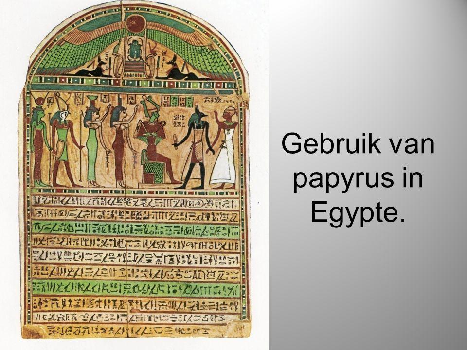 Gebruik van papyrus in Egypte.