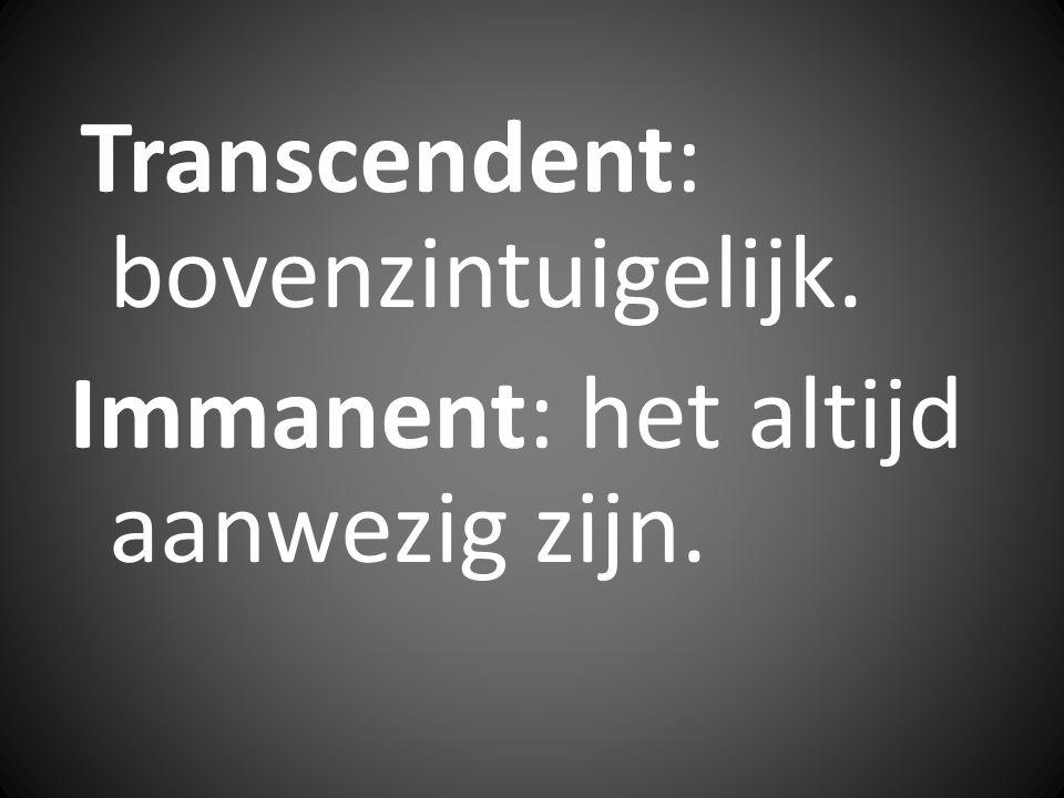 Immanent: het altijd aanwezig zijn.