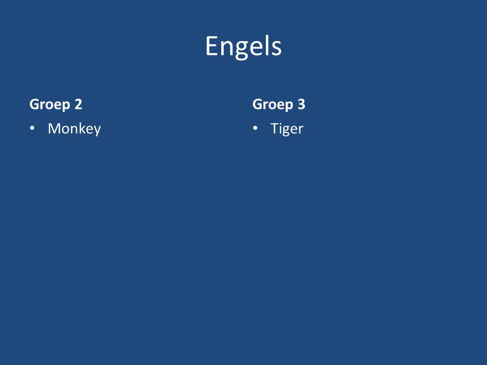 Engels Groep 2 Groep 3 Monkey Tiger