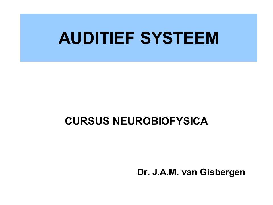CURSUS NEUROBIOFYSICA